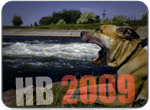 HB2009.png